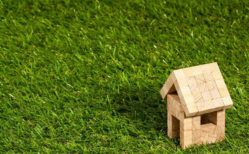 zielony dach cena